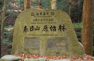 世界遺産「春日山原始林」NW @ 奈良県庁前 登大路園地前東屋 | 奈良市 | 奈良県 | 日本